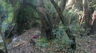 Isla del Cerrito: un joven de 23 años fue detenido acusado de abuso sexual