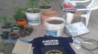 Incautaron plantines y bochitas de marihuana en Villa Ángela