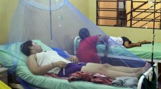 A 500km de Chaco: crece la preocupación por 70 casos autóctonos de dengue