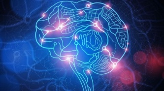 Para poner en práctica: ¿En qué lugar del cerebro nace la generosidad?