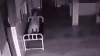 Video - Resucitación en vivo: filmaron el alma de una mujer muerta saliendo de su cuerpo