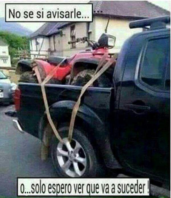 Car Shipping Quote: Diario21.tv